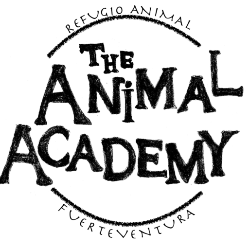 The Animal Academy