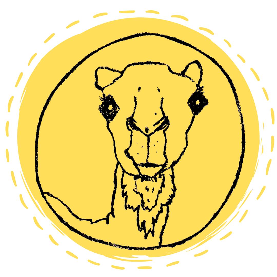 Superhéroes Dromedarios - The Animal Academy